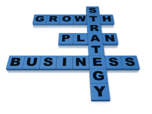 Writing the Buyer's Business Plan